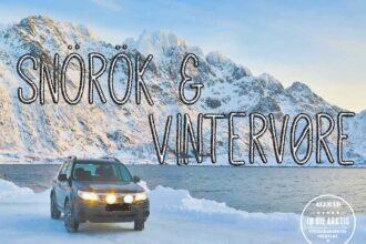 CovAutofahren im Winter