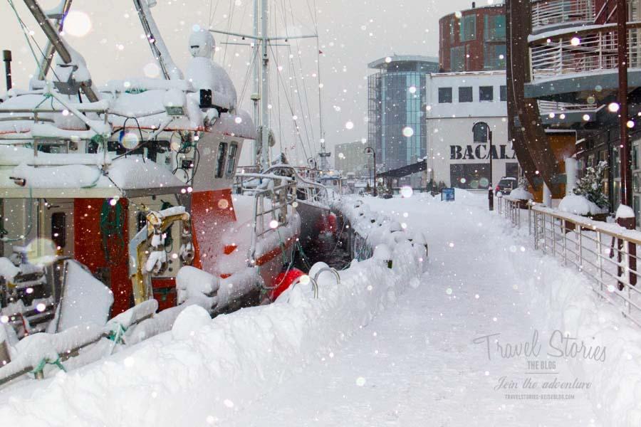 Svolvaer, selten so tief verschneit wie heute! ©Sabine Mey-Gordeyns