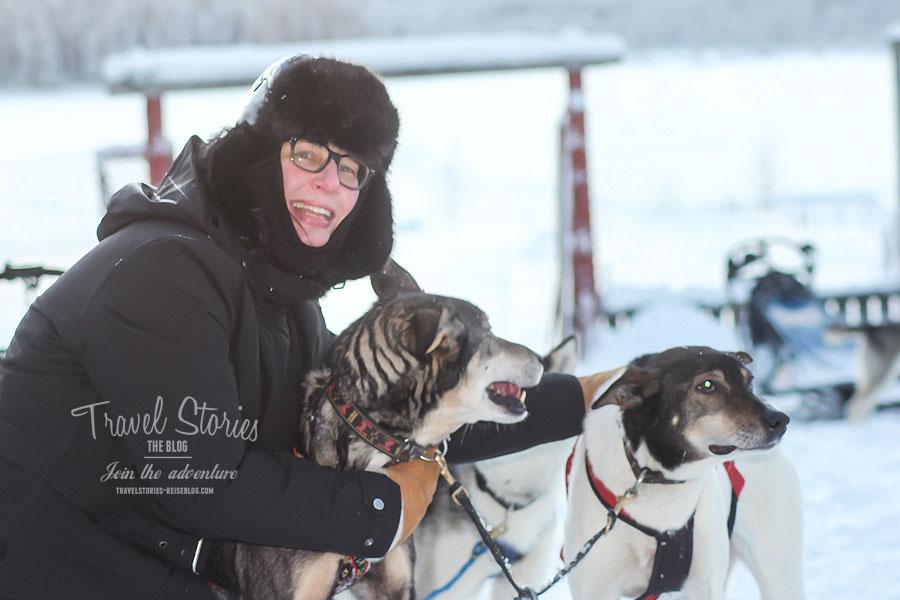 Alaskan Huskies - Foto mit freundlicher Genehmigung von spuren-im-schnee.de