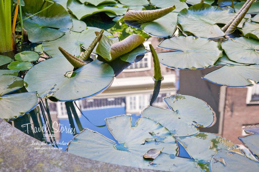 In der Reflektion in diesem Teich in einem Grachtengarten scheint die Zeit still zu stehen ©Sabine Mey-Gordeyns