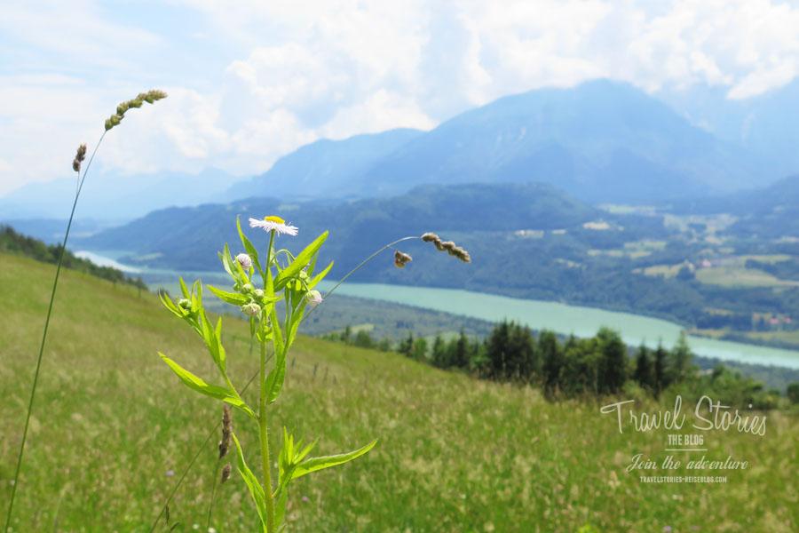 Aussicht auf das Drautal vom Radsberg ©Sabine Mey-Gordeyns, travelstories-reiseblog.com